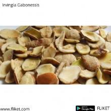 Irvingia Gabonessis